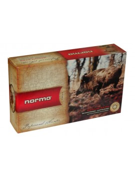 norma 170g ppdc