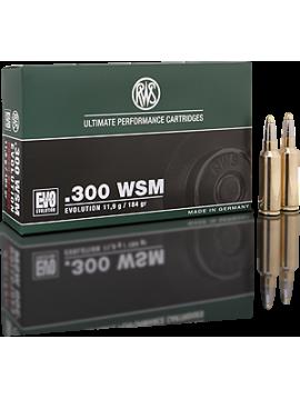 RWS 300wsm 184g evolution