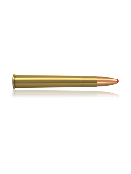 NORMA 9.3X74 PPDC 18.5G