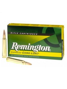 Remington 300 Win Mag 180grain Core Lokt PSP